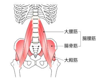 関節と筋肉両面からアプローチ!