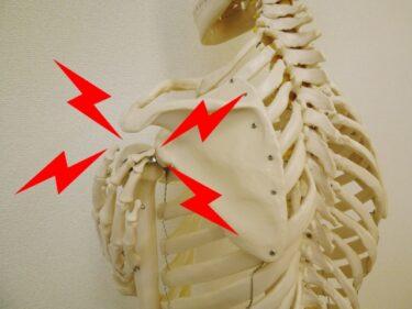 あなたの肩の痛みはなぜ起こる?