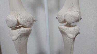膝、股関節などの辛い症状を改善するには!!