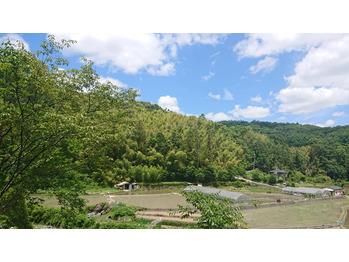 日曜日~休みを頂いて神聖な地熊野へ行ってきます!