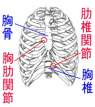 呼吸法を取り入れ背中の痛みを改善!!