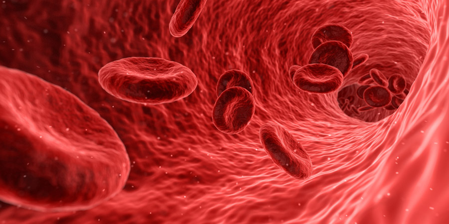 血液をサラサラにして免疫力を上げる!